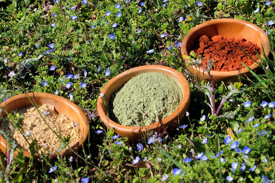 Coloration végétale près de rouen 76